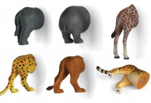 Kikkerland Safari Animal Butt Magnets